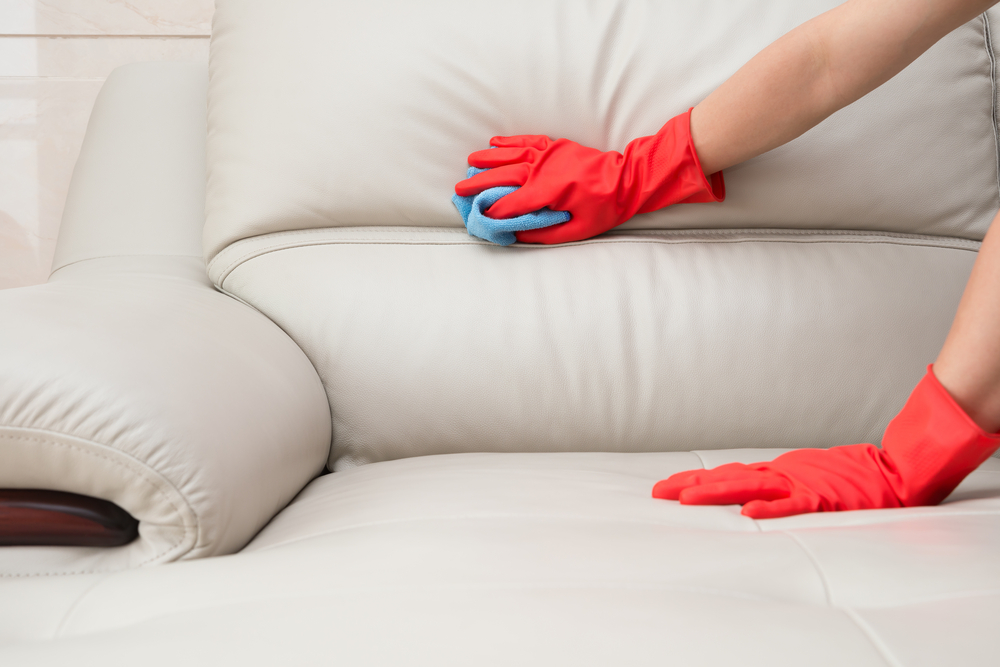 Upholstery Care: How to Maintain Your Sofa